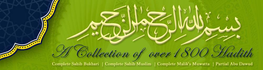 Download Free Bukhari Muslim Malik Dawud Hadith Collection